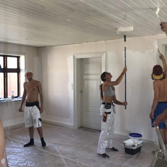 Bygningsmaler PGU - FGU NORD Gladsaxe